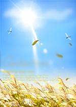匈奴史料汇编  (下编)